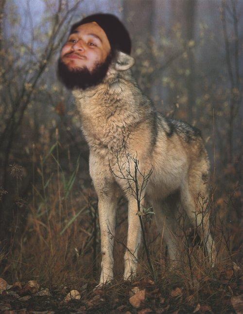 jagvirwolf